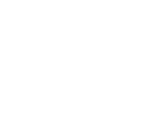 ECUdoctor